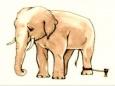 Не думай про слона...