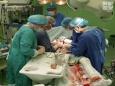 В Беларуси провели более 320 пересадок сердца
